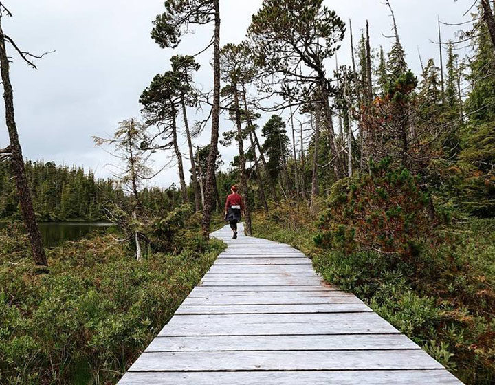 Vancouver Island North commuter trail